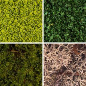 Foliage & Mosses